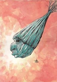 Jacob Aronow, Seed 2013